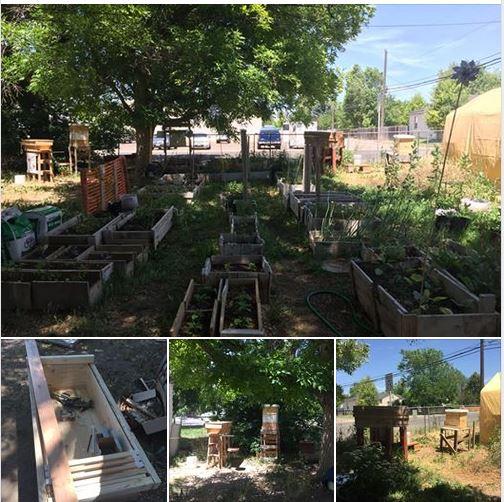 2019 garden oping day