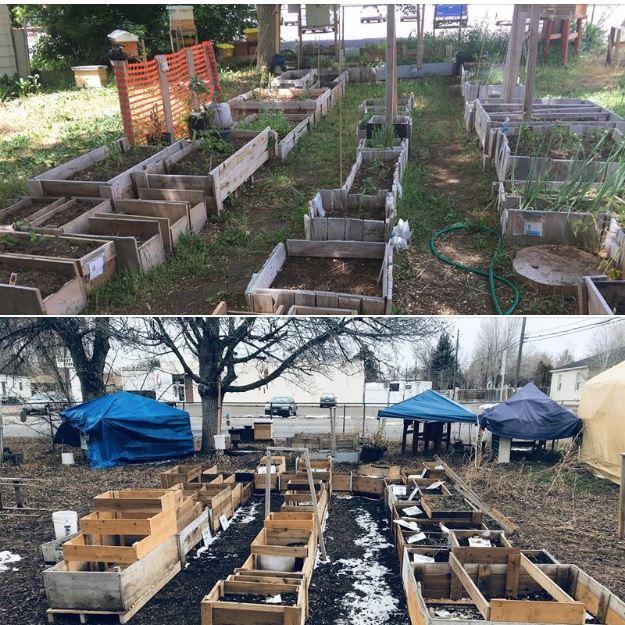 2016 to 2020 garden