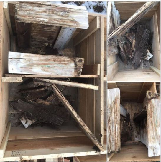 3 1/2 year old garden boxes that have fallen apart